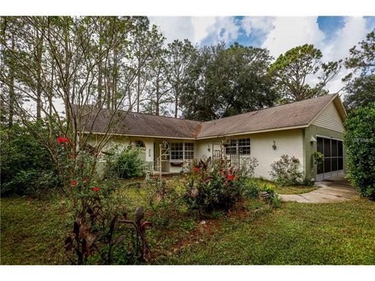 42021 Lakeview , Altoona, FL - USA (photo 5)