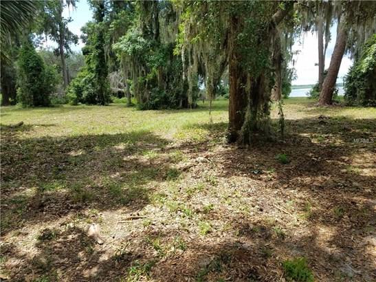 None , Umatilla, FL - USA (photo 5)
