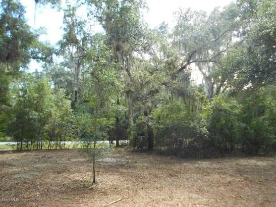120 Evans , Micanopy, FL - USA (photo 3)