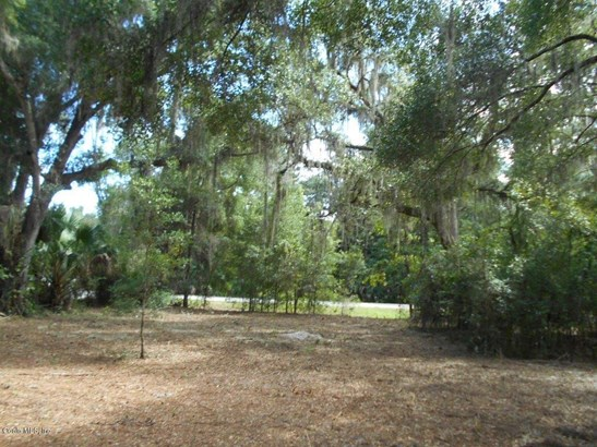 120 Evans , Micanopy, FL - USA (photo 5)