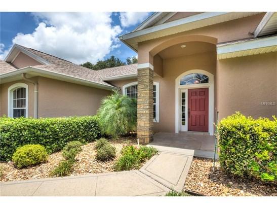 3041 Bulkley , Eustis, FL - USA (photo 3)