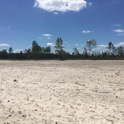 0 Henry Lee , Hilliard, FL - USA (photo 3)