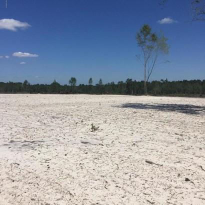 0 Henry Lee , Hilliard, FL - USA (photo 4)