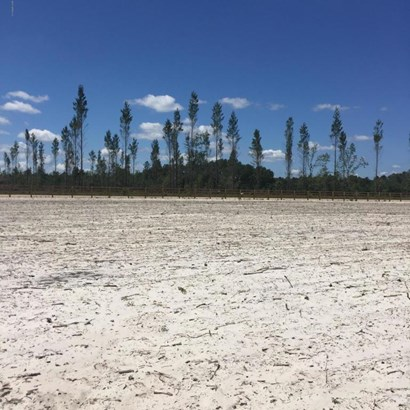 0 Henry Lee , Hilliard, FL - USA (photo 5)