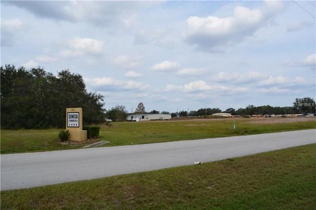 893 Anderson , Groveland, FL - USA (photo 4)