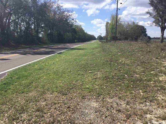 0000 Cr 232 , Trenton, FL - USA (photo 2)