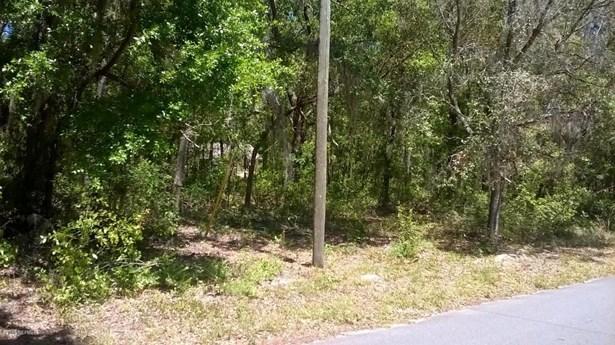 542 Hillsborough , Florahome, FL - USA (photo 3)