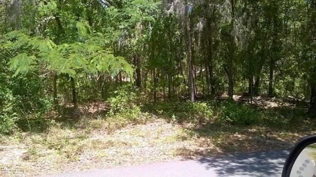 542 Hillsborough , Florahome, FL - USA (photo 4)