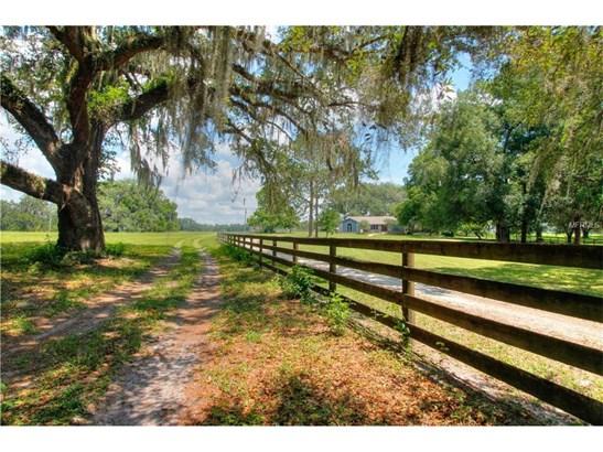 18751 Ne 55th , Williston, FL - USA (photo 4)