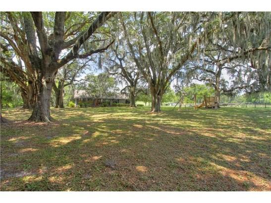 18751 Ne 55th , Williston, FL - USA (photo 5)
