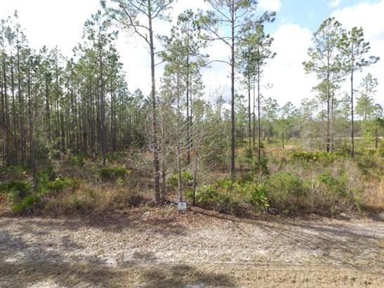 0 Bullock Bluff , Bryceville, FL - USA (photo 1)