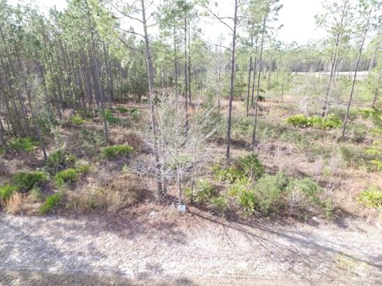 0 Bullock Bluff , Bryceville, FL - USA (photo 3)