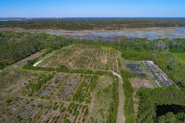 1-12602 Sawpit , Jacksonville, FL - USA (photo 1)