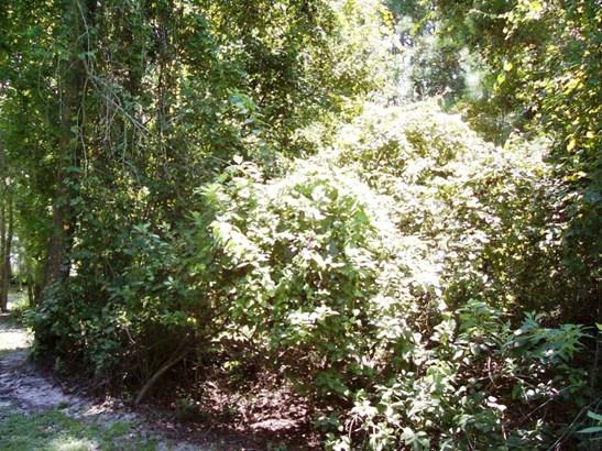 8156 Alderman , Melrose, FL - USA (photo 5)