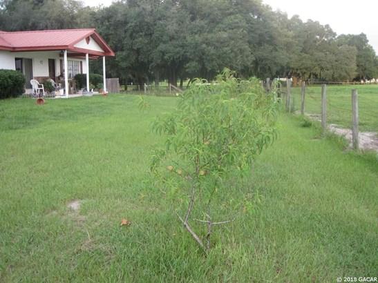 1750 17th , Bell, FL - USA (photo 4)