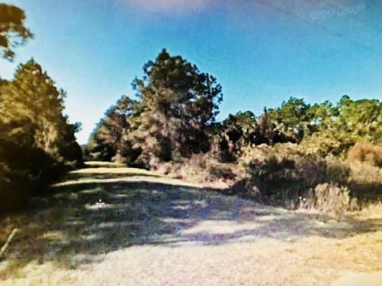 436 Dogwood , Georgetown, FL - USA (photo 1)