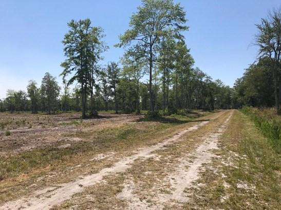 0 Old Dixie , Callahan, FL - USA (photo 1)