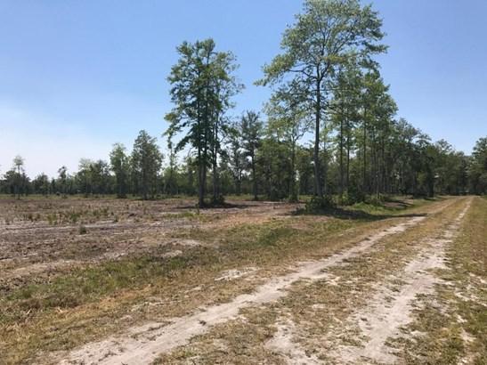 0 Old Dixie , Callahan, FL - USA (photo 2)