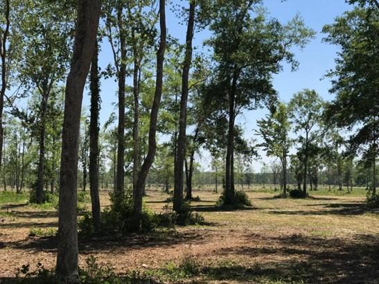 0 Old Dixie , Callahan, FL - USA (photo 5)
