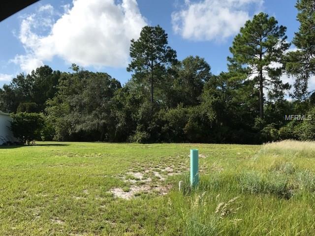 35140 Forest Lake , Leesburg, FL - USA (photo 4)