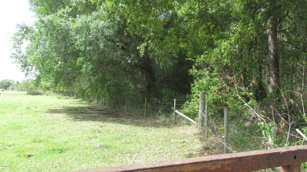 0000 County Road 233 , Starke, FL - USA (photo 2)