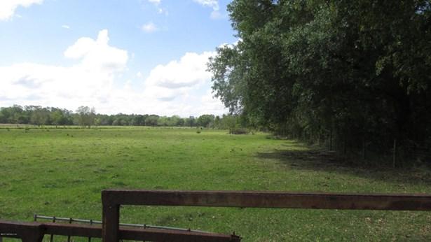 0000 County Road 233 , Starke, FL - USA (photo 4)