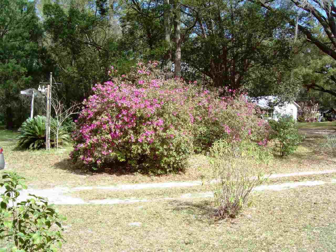 17016 72nd , Hawthorne, FL - USA (photo 4)