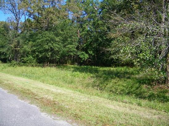 0 Oak Trail , Jacksonville, FL - USA (photo 2)