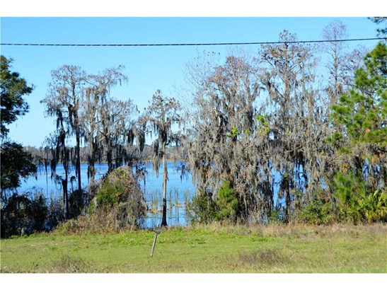 County Road 561 , Clermont, FL - USA (photo 3)