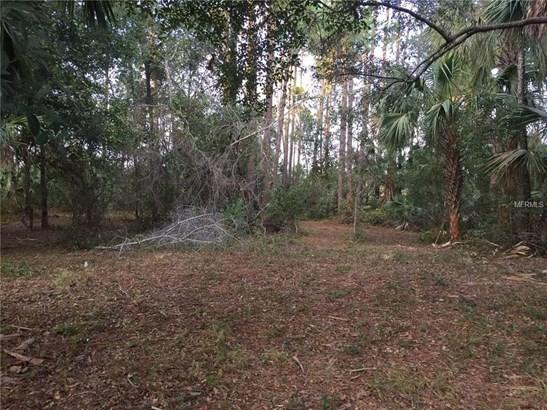 Pervis , Osteen, FL - USA (photo 1)