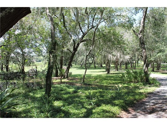 14420 Old Hwy 50 , Clermont, FL - USA (photo 4)