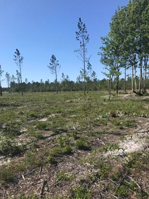 0 Co Rd 121 Lot 5 , Hilliard, FL - USA (photo 3)