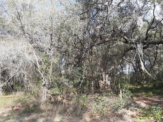 114 Ranchette , Florahome, FL - USA (photo 4)