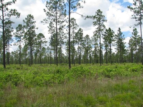 0 Breadcrumb 1186 1186, Callahan, FL - USA (photo 4)