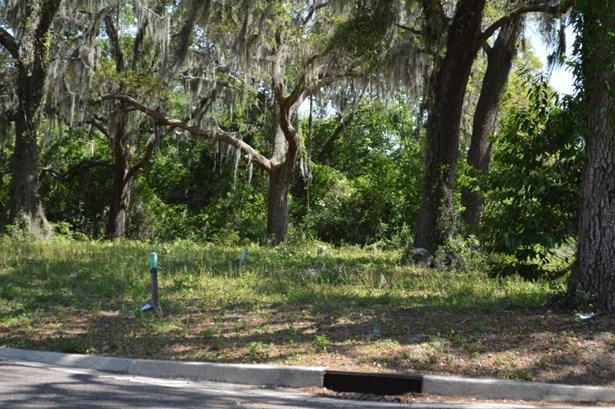 29318 Grandview , Yulee, FL - USA (photo 2)
