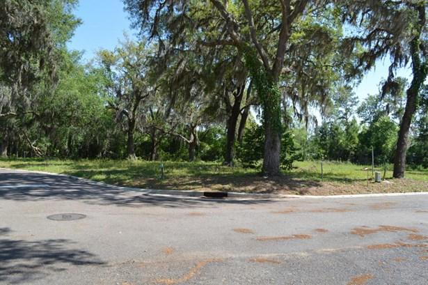 29318 Grandview , Yulee, FL - USA (photo 3)