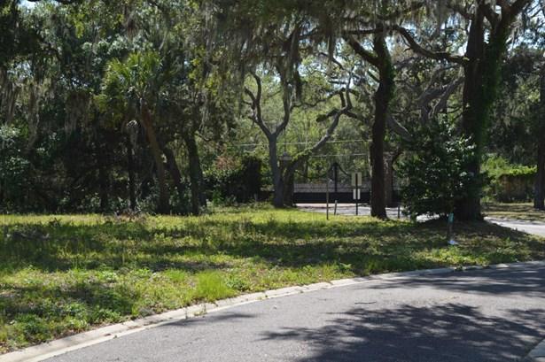 29318 Grandview , Yulee, FL - USA (photo 5)