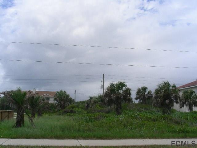 2420 S Ocean Shore Blvd , Flagler Beach, FL - USA (photo 4)