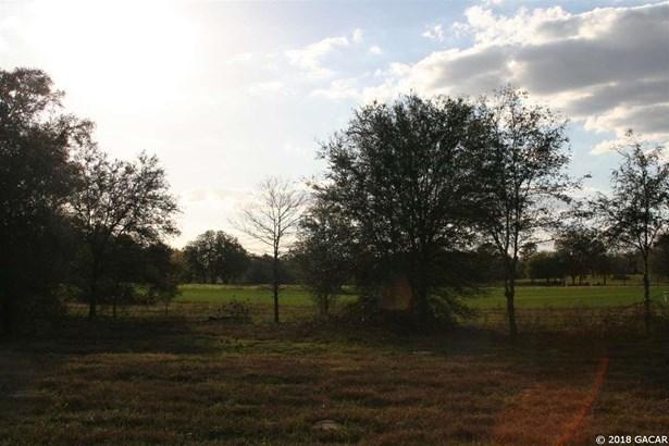 000 42nd , Morriston, FL - USA (photo 2)