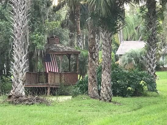 920 Lemon Bluff , Osteen, FL - USA (photo 3)