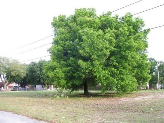 Lowry , Haines City, FL - USA (photo 1)