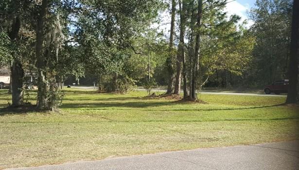 0 Leona , Jacksonville, FL - USA (photo 1)