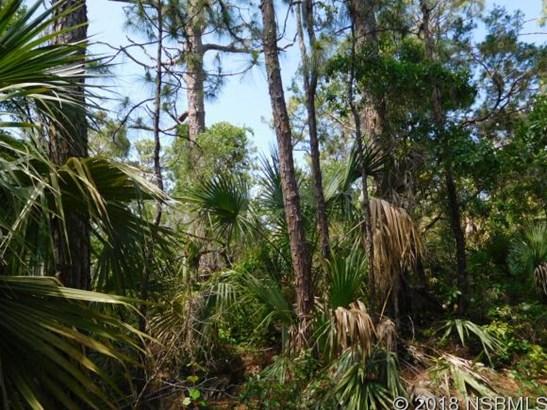 0 Osteen St Parcel E , Oak Hill, FL - USA (photo 2)