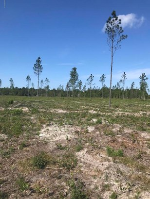 0 Co Rd 121 Lot 4 , Hilliard, FL - USA (photo 3)
