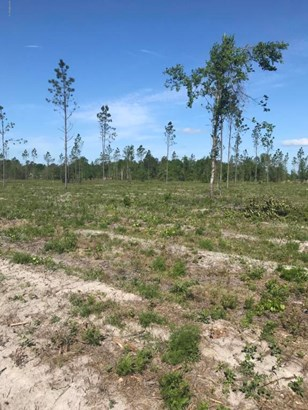 0 Co Rd 121 Lot 4 , Hilliard, FL - USA (photo 5)