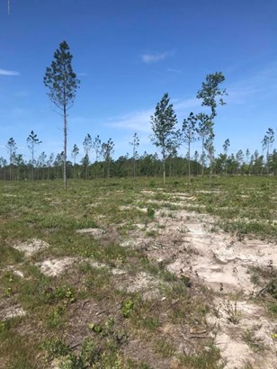 0 Co Rd 121 Lot 3 , Hilliard, FL - USA (photo 4)