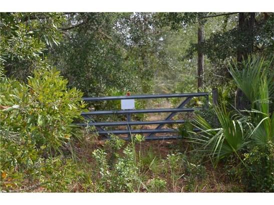 535 Cypress Isles , Osteen, FL - USA (photo 5)