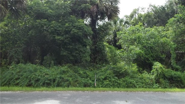 Macy & S. Summit Ave , Lake Helen, FL - USA (photo 1)