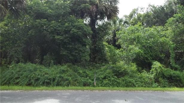 Macy & S. Summit Ave , Lake Helen, FL - USA (photo 2)