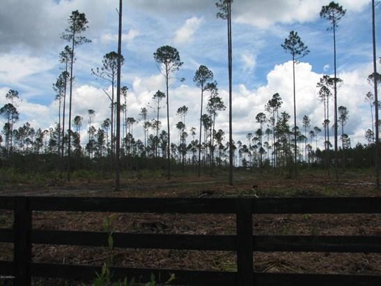 0 Woods 1226 1226, Callahan, FL - USA (photo 2)